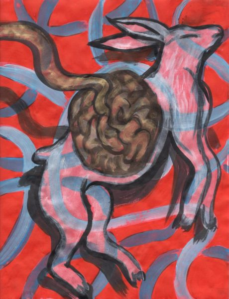Eva-Davidova-Rabbit with Unravelling Brain